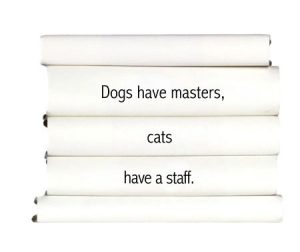 dogs-have-masters-cats-have-a-staff.