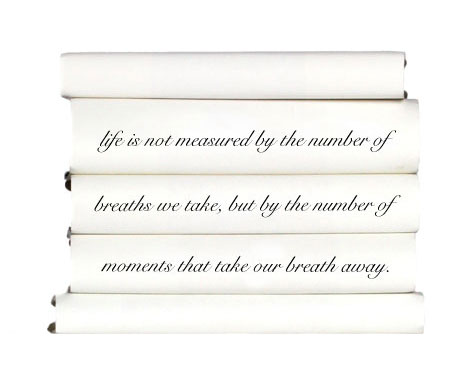 life-is-not-measured-by-the-number-of-breaths-we-take-but-by-the-number-of-moments-that-take-our-breath-away.